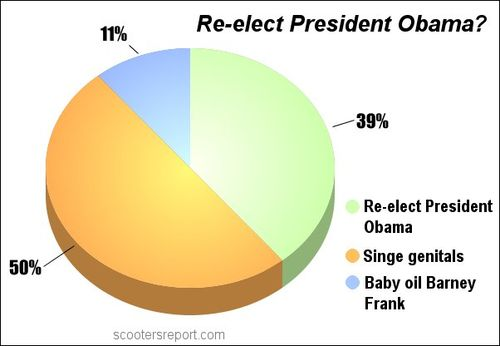 Re elect Obama poll