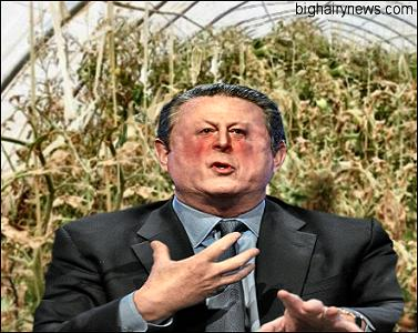 Al Gore in greenhouse