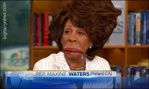 Maxine Waters Singer Maxine Waters