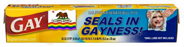 Seals In Gayness