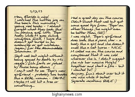 Obama Journal 2-17-13