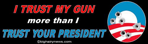 I Trust My Gun small