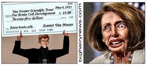 Nancy Pelosi brain cell fund