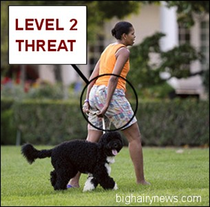 Michelle Quot Obesity Is Greatest National Security Threat