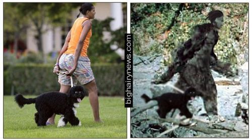 Michelle Obama Bigfoot