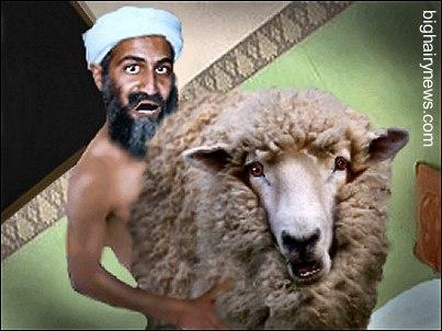 Last photo of Osama Bin Laden alive
