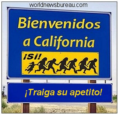 Welcome to California Illegal Immigrants
