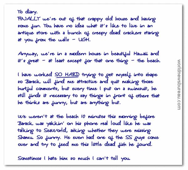 Michelles Diary 12-23-13