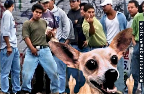 Hispanic protesters
