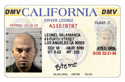 California Drivers License