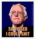 So Pissed Bernie Sanders