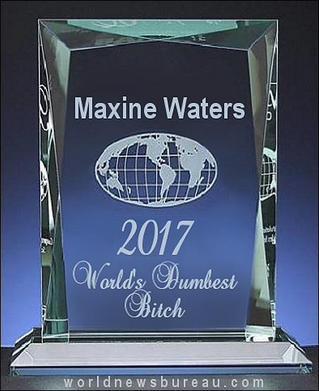 Maxine Waters Dumbest Bitch Award
