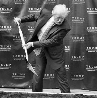 The Donald Builds Things
