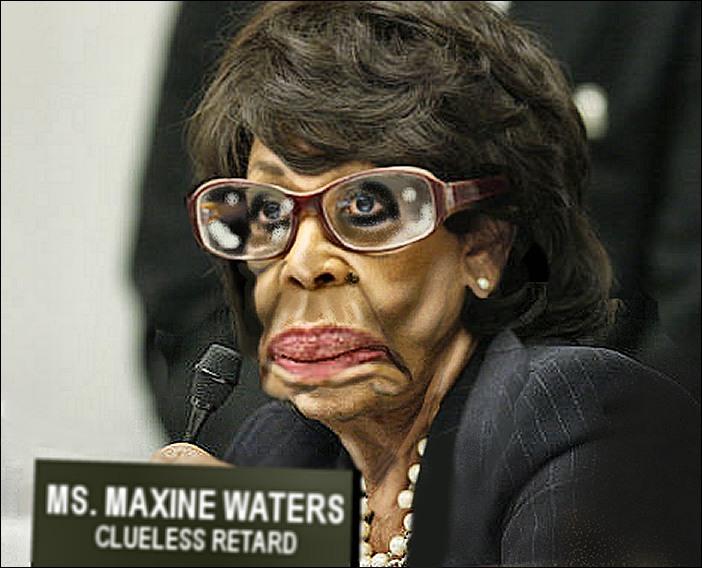 Maxine Waters Clueless Retard