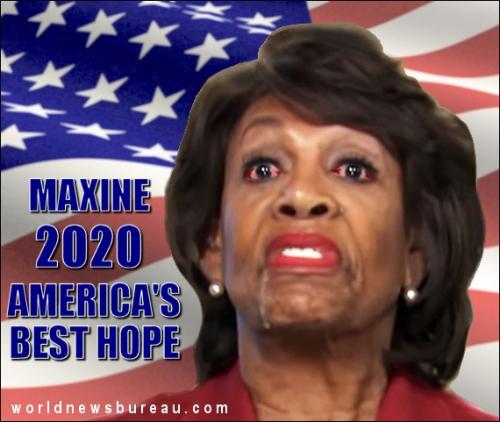 Maxine 2020 campaign
