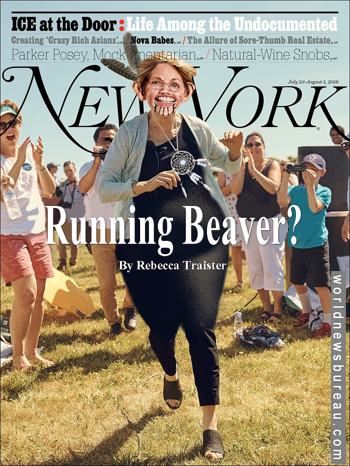 New York Magazine Elizabeth Warren