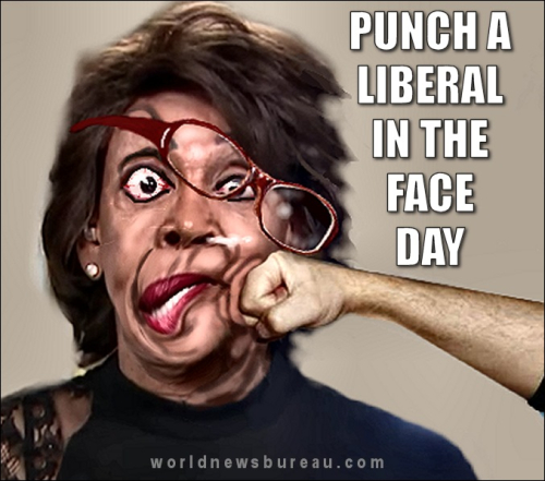 Punch_a_liberal_in_the_face_day