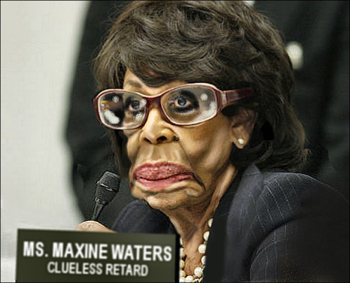 Maxine Waters Clueless Retard