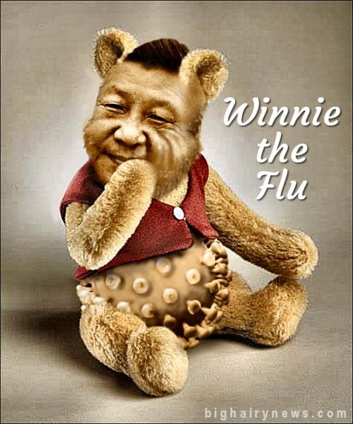 Winnie the Flu