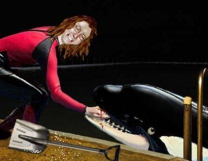 Scooter_mammal_fish
